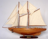 Bluenose Wood